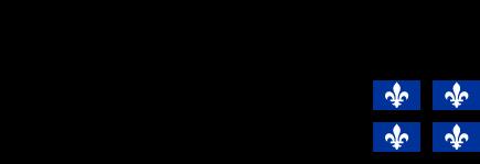 FRQNT_RGB(multimedia-transparent)